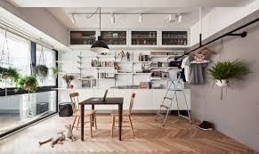 cat owner u0027s cramped apartment gets room to breathe