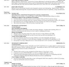 Harvard Resume Template Fascinating Harvard Resume Sle 10 Business Template Cv