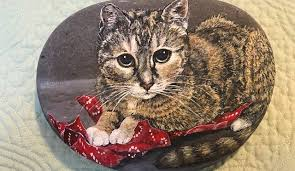 cat with wrapping paper on a painted furniture by sue