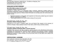 Resume Examples It by Resume Examples It Professional Haadyaooverbayresort Com