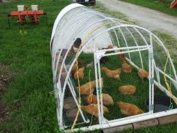 chicken tractor 101 what it is u0026 the basics of building one