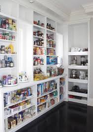 Kitchen Pantry Design Ideas by Best 25 Pull Out Pantry Shelves Ideas Only On Pinterest Pull