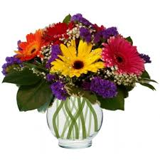 flower delivery colorado springs flowers colorado springs my colorado springs florist my