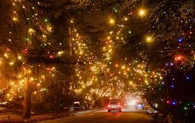 christmas tree lane 83 photos u0026 72 reviews christmas trees