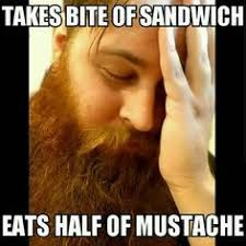 Funny Beard Memes - funny beard meme beard humor bearded men problems beards