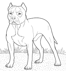 american pitbull terrier book pitbull coloring page embroidery patterns u0026 designs pinterest