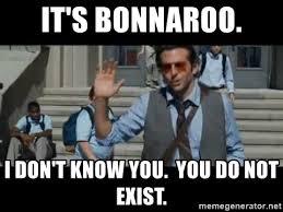 Bonnaroo Meme - it s bonnaroo i don t know you you do not exist sdfdsg meme
