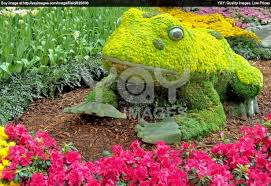 design flower garden
