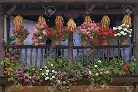balcony garden stock photos royalty free balcony garden images