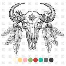 hand drawn animal skull coloring design buffalo vector clipart