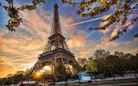 hotel rates in paris halved as visitor numbers slide