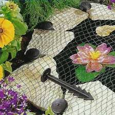 pond accessories decorations allpondsolutions