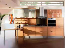 Best Brand Of Kitchen Cabinets Kitchen Furniture Beautiful Best Kitchen Cabinet Brands Photos
