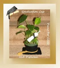 graduation cap covers graduation cap plant pot cover and diploma