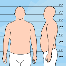 how to dress your body type big u0026 tall bespoke unit