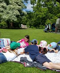 eggnogg colour in picnic blanket renovation bay bee