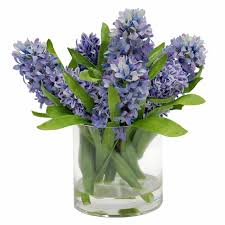 Round Glass Vase Hyacinths In Round Glass Vase 12
