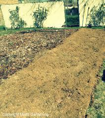 how to make easy raised garden beds using cardboard misfit gardening
