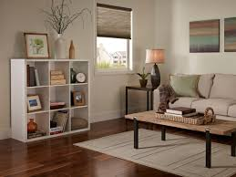 furniture colors to paint a living room simple interior design