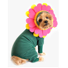 Body Halloween Costumes Flower Halloween Dog Costume Doggie Design