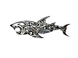 tribal tattoo designs what is the future of tribal tattoos hawaiian tribal tattoos symbol meanings tribal shark tattoos