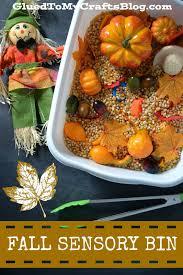 thanksgiving sensory bin stimulate the senses fall sensory bin