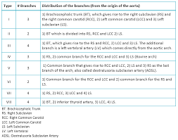 types of table ls anatomic variations of the branches of the aortic arch in a peruvian