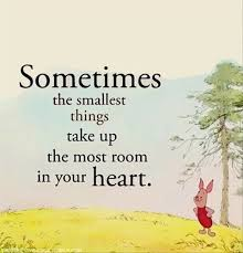 quotes a day piglet quote dump a day