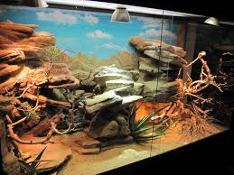 bearded dragon lighting guide make a fake rock cave basking spot for a reptile cage