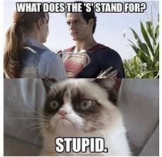 Meme What - grumpy cat meme what does the s stand for stupid picture golfian com