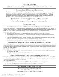manager resume sales territory