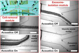l islation si e auto b isolation of exosomes from whole blood by integrating acoustics and