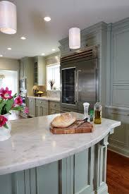 minneapolis sub zero refrigerator kitchen transitional with single