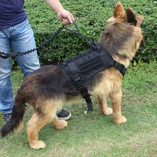 medium dog harness tactical military molle vest k9 dogs training