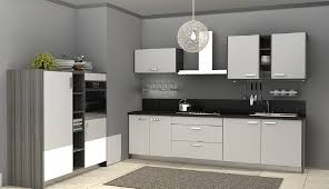 design modern grey minimalist high end one wall kitchen sleek
