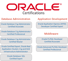 Oracle Dba Resume Sample by Oracle Dba Training Leading It Services Placement And Training