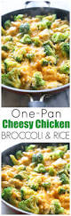 best 25 entree recipes ideas on pinterest easy chicken recipes