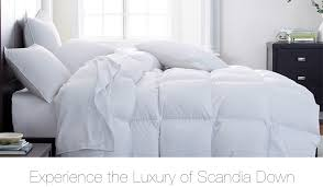 home design down pillow fantastic scandia down pillows on sale f84 on attractive interior