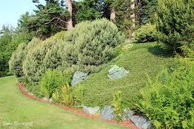 Wildlife Garden Ideas Gardening For Wildlife Nbsp Cover