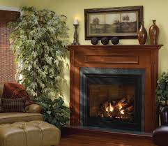 wall mounted gas fireplace vent free wall decoration ideas