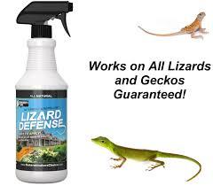 amazon com lizard defense all natural deterrent and repellent