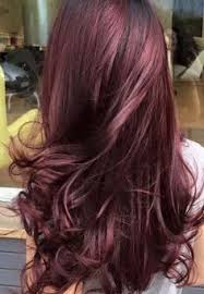 brown cherry hair color 2017 black cherry hair color ideas for females best hair color