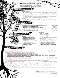 Examples Of Skills In A Resume by 128 Best Cv Resume Portfolio Images On Pinterest Portfolio