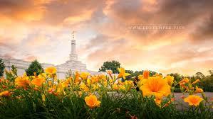 Flowers In Detroit - detroit michigan temple lds temple pictures