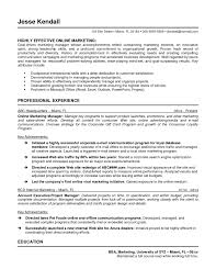 Sample Resume For Marketing Manager by Resume Online Free Resume For Your Job Application