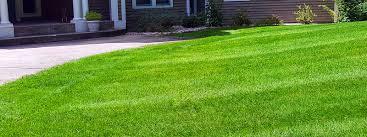 miracle lawn maintenance keeping kalamazoo green