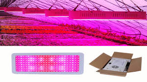 Indoor Plant Light by Sansun Led Grow Light For Red Blue Indoor Plant Lights And