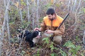 hounds and horses for hunting squirrels midwest outdoors