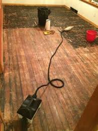 removing linoleum scraping up linoleum restoring wood floors