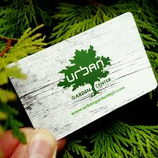 Urban Garden Portland Maine - wp 1480002146514 jpg